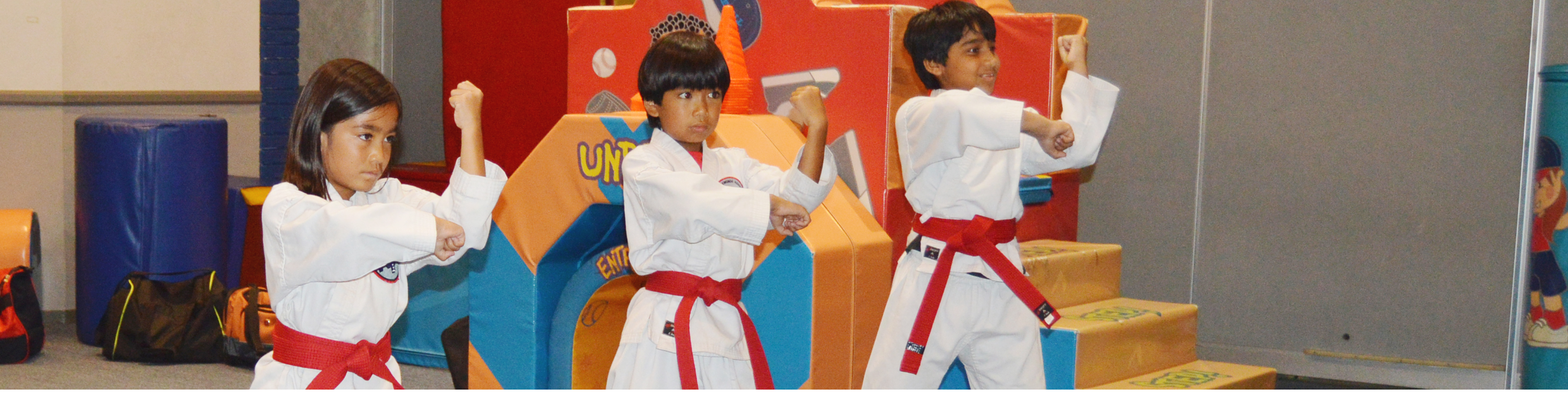 Tae Kwon Do Header Img