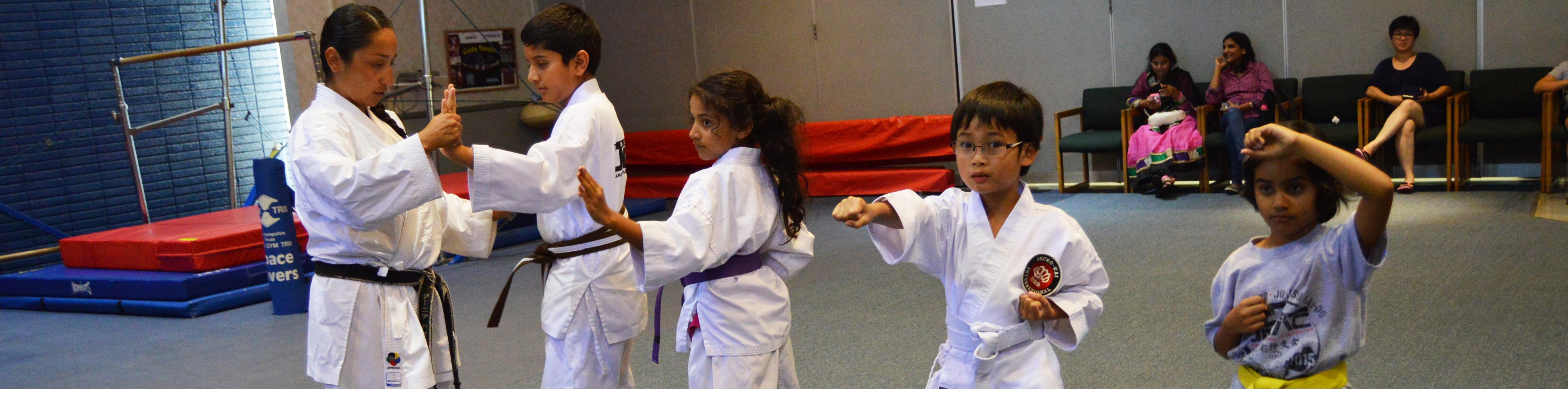 Karate Header Img